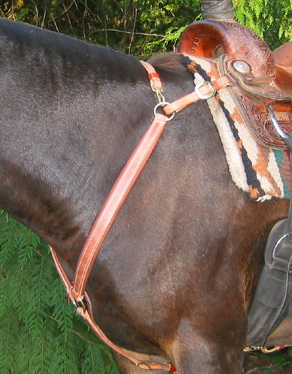 Martingale Rings To Fit Breast Plate Fullsize